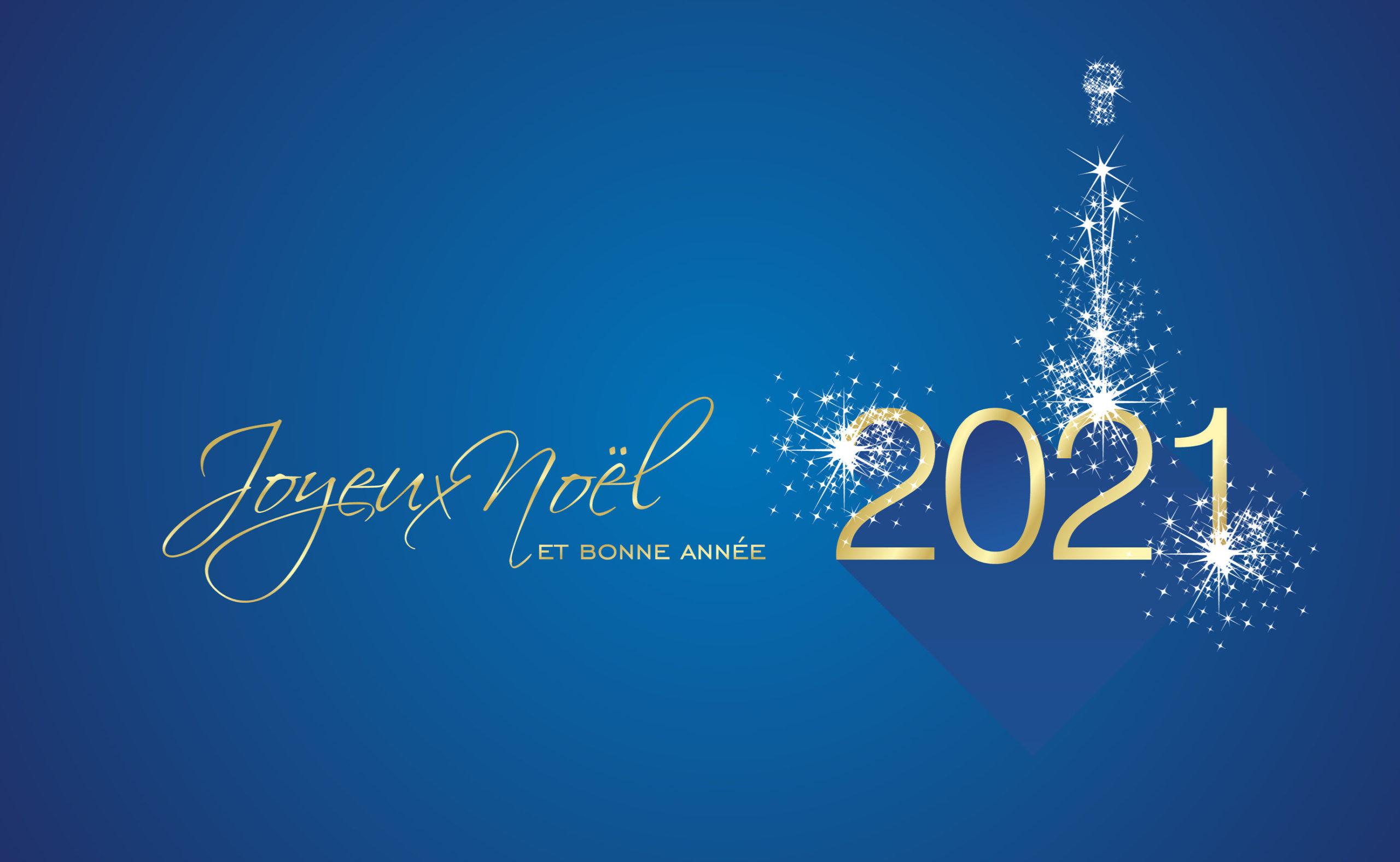 Joyeuses fêtes et bonne année 2021 !